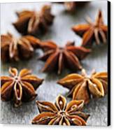 Star Anise Fruit And Seeds Canvas Print by Elena Elisseeva