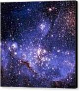 Stars And The Milky Way Canvas Print by Don Hammond