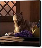 Still Life With Wine Fruit And Cat  Canvas Print by Daniel Eskridge