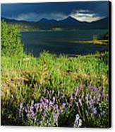 Storm In Dillon Canvas Print by Lynn Bauer