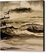 Stormy Arrival Canvas Print by Scott Nelson