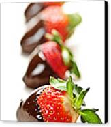 Strawberries Dipped In Chocolate Canvas Print by Elena Elisseeva