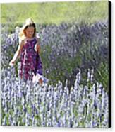 Stroll Through The Lavender Canvas Print by Brooke T Ryan