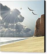 Sunlight Shines Down On Two Birds Canvas Print by Corey Ford