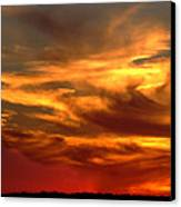 Sunset Bull  Canvas Print by Cliff Norton