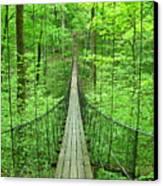 Suspension Bridge Canvas Print by Daniel Muller