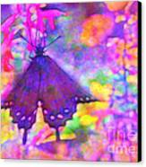 Swallowtail Canvas Print by Judi Bagwell