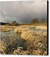Swampland Canvas Print by Robert Lacy