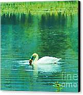 Swan Lake Canvas Print by Judi Bagwell