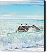 Tasman Sea Canvas Print by MotHaiBaPhoto Prints