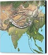 Tectonic Map Of Asia Canvas Print by Gary Hincks