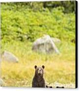 The Curious Mom Canvas Print by Tim Grams