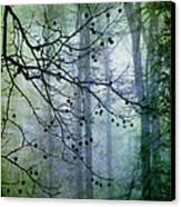 The Forest Cathedral Canvas Print by Judi Bagwell