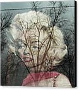 The Ghost Of Norma Jean Canvas Print by Todd Sherlock