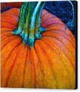 The Great Pumpkin Canvas Print by Glenna McRae