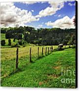 The Green Green Grass Of Home Canvas Print by Kaye Menner