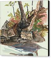 The Jessup Indian Lake Ny Canvas Print by Ethel Vrana