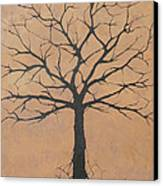 the Lindsey Tree Canvas Print by Julia Raddatz