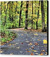 The Mount Vernon Trail. Canvas Print by JC Findley