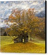 The Old Oak Tree Canvas Print by Debra and Dave Vanderlaan