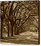 The Old South Series In Sepia Canvas Print by Suzanne Gaff