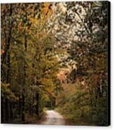 The Path Less Traveled 2 Canvas Print by Jai Johnson