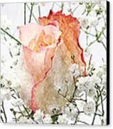 The Rose Canvas Print by Andee Design