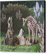 The Termite Mounds Canvas Print by Sandra Chase