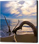 The Wooden Arch Canvas Print by Marco Busoni
