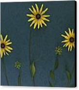 Three Yellow Flowers Canvas Print by Deddeda