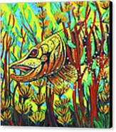 Tiger Muskie Canvas Print by Bob Crawford
