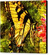 Tiger Swallowtail Butterfly Happily Feeds Canvas Print by J Larry Walker