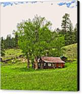 Tom's Old Cabin Canvas Print by James Steele