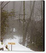 Trailhead Covered With Snow Canvas Print by Will and Deni McIntyre