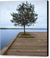 Tree On Jetty Canvas Print by Billy Currie Photography