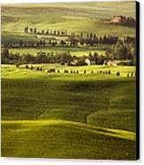 Tuscan Fields Canvas Print by Andrew Soundarajan
