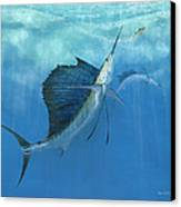 Two Of A Kind Sailfish Canvas Print by Kevin Brant