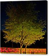 Under The Tree Canvas Print by Christine Stonebridge