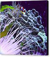 Undersea World Canvas Print by Robin Hewitt