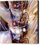 Universal Wings Canvas Print by Linda Sannuti