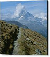 View Down A Trail Towards Canvas Print by Taylor S. Kennedy