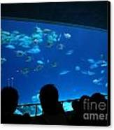 Visitors At Ocean Aquarium Canvas Print by Yali Shi