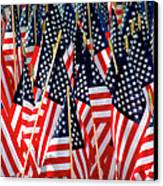 Wall Of Us Flags Canvas Print by Carolyn Marshall