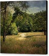 Wandering Path I Canvas Print by Tamyra Ayles