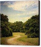 Wandering Path II Canvas Print by Tamyra Ayles