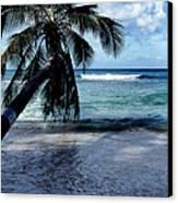 Warm Water Shade Canvas Print by Skip Willits