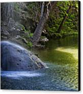 Water Falling On Rock Canvas Print by Lisa  Spencer