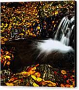 Waterfall Canvas Print by Irinel Cirlanaru