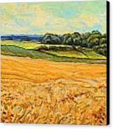 Wheat Field In Limburg Canvas Print by Nop Briex