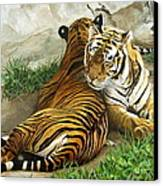 Wild Content Canvas Print by Sandra Chase